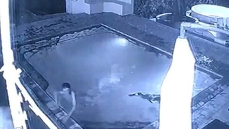 Hóspedes sofrem ataque de crocodilo em piscina de hotel
