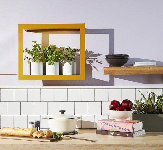 Photo of Growframe in Mustard