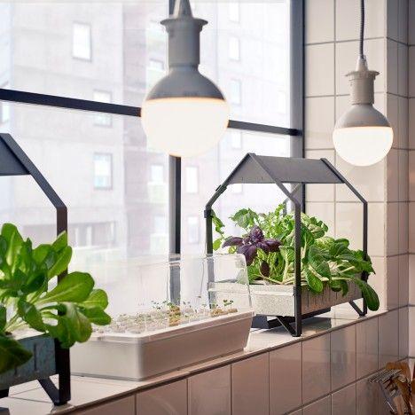 Ikea introduce a hydroponic indoor gardening kit | Indoor ...