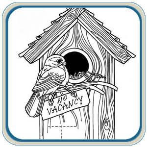 song birds coloring pages - photo#40