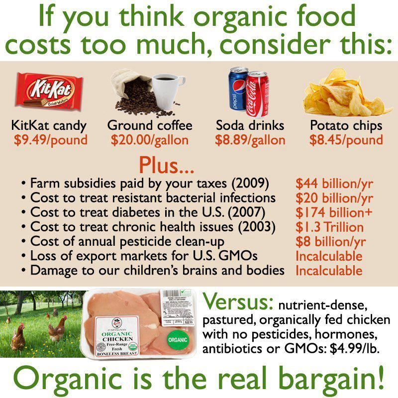Cost of Eating Healthy vs Not Healthy Organic fruit, Pie charts