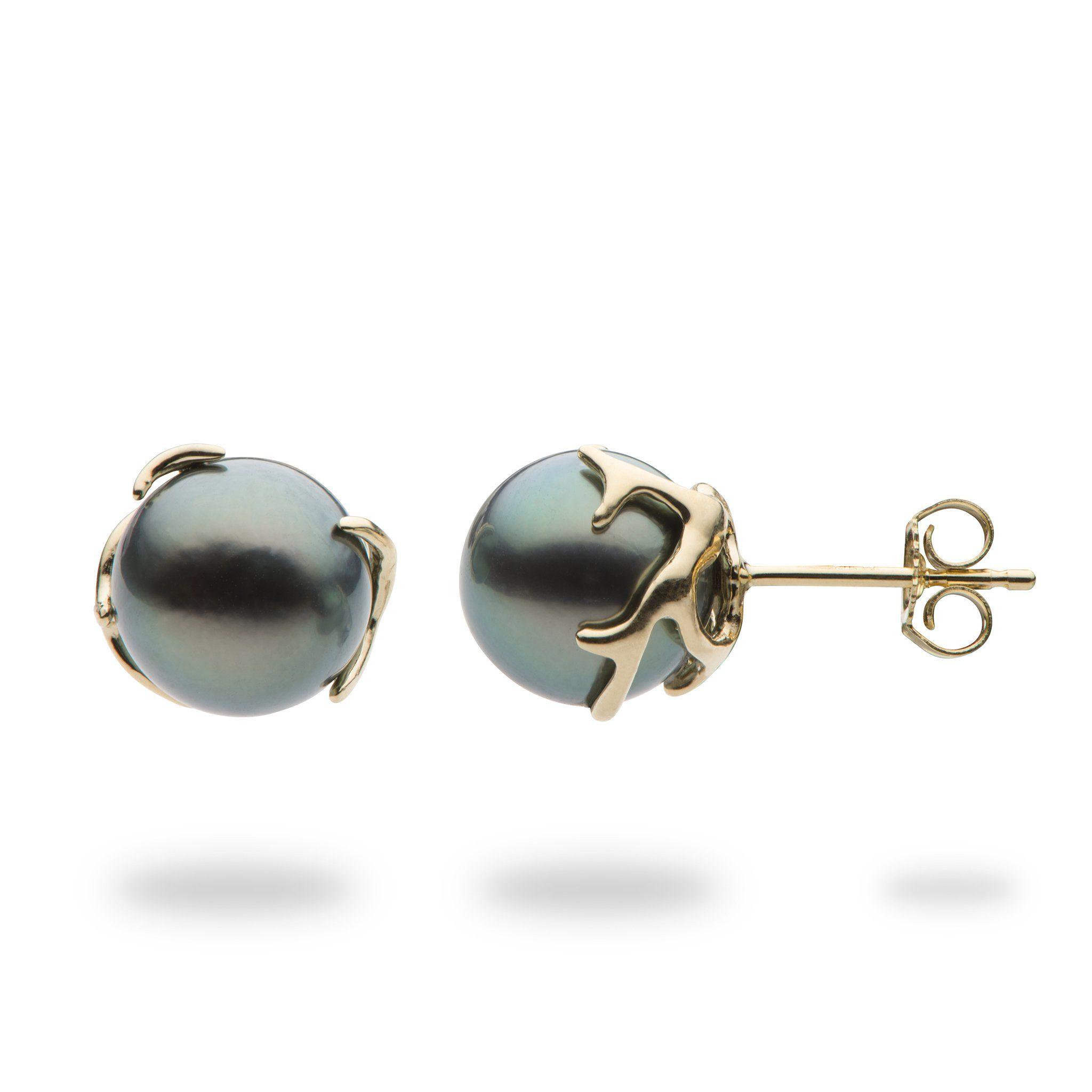 Hawaiian Heritage Tahitian Pearl Earrings In 14k Yellow Gold 9 10mm In 2020 Tahitian Pearl Earrings Black Pearl Earrings 14k Yellow Gold Stud Earrings
