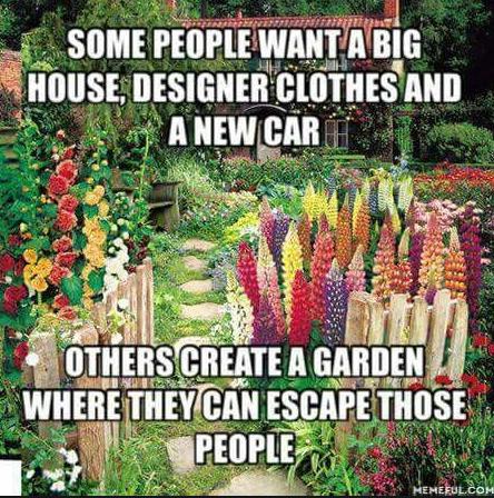😜🌹😜🌹 Lol! #gardenmemes #memesaboutgardening #humor #sillymemes #flowers #gardeners #ilovegardening #gardenlovers #bestgardeninfo