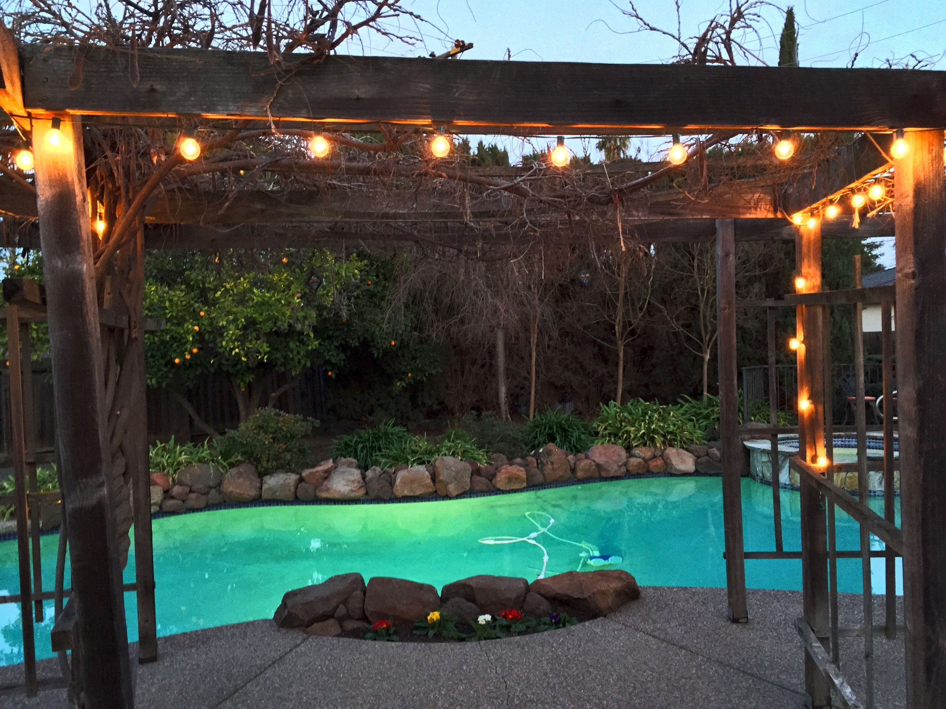 springtime photo of the pool at 4637 candlewood court concord ca