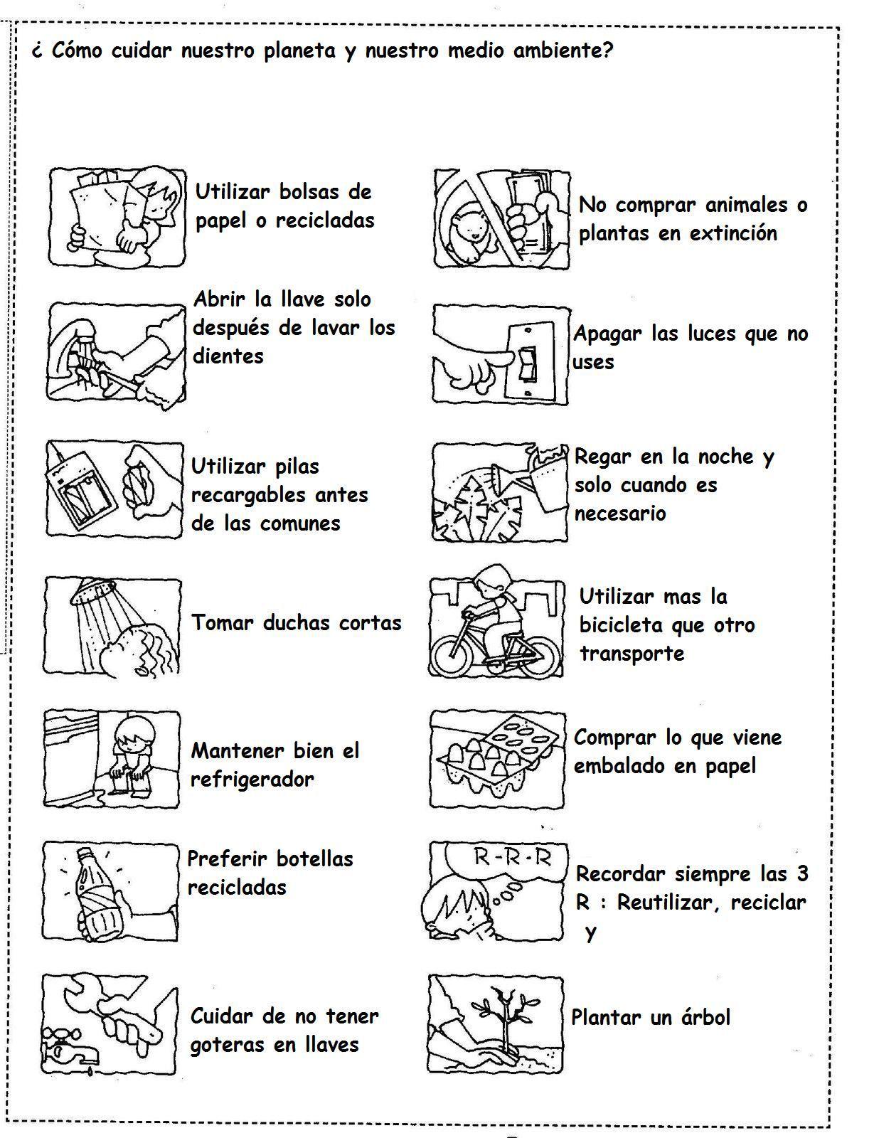 Samoga recicla consejos para el cuidado de nuestro - Consejos para pintar ...