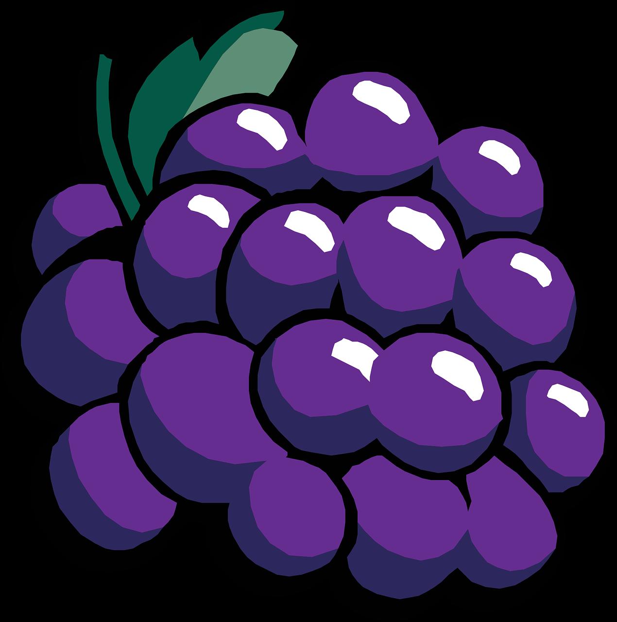 Food Grapes Fruit Ripe Wine Bunch Food Vineyard Food Grapes Fruit Ripe Wine Bunch Food Vineyard Clip Art Graphic Illustration Online Art