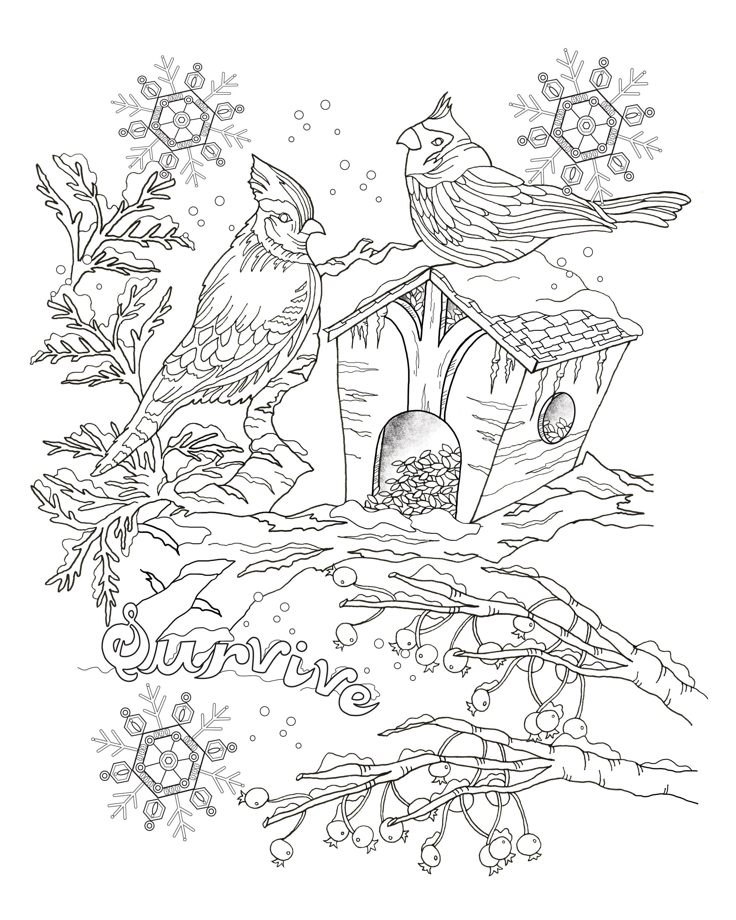 Cover and sample pages of drawings for an adult coloring book