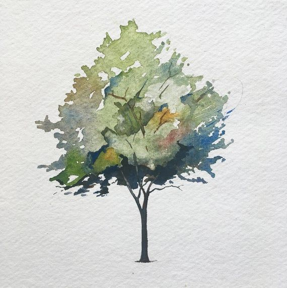 Watercolour tree in summer   Original painting   Water color   Summertime tree with foliage
