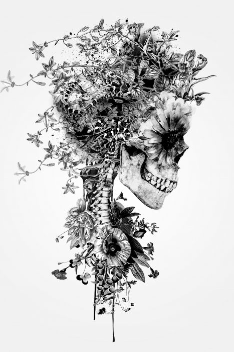 "Photo of Artwork ""Skull BW"" by Riza Peker available on www.hovercover.art"