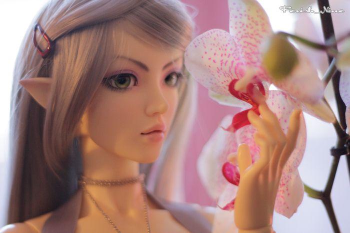 "Myka ""Orchidée"" - Perish_Nine"