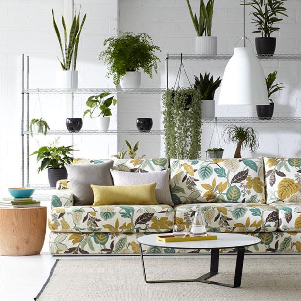 Warwick Fabrics, ELVIRA
