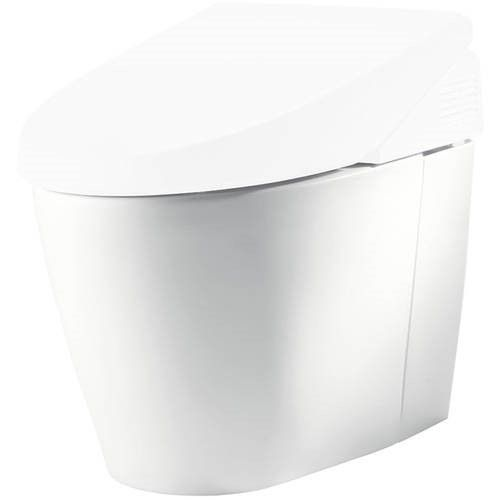 Toto Neorest 550 Elongated Toilet Bowl Only With Sanagloss Ceramic Glaze Available In Various Colors Toilet Bowl Ceramics Toilet