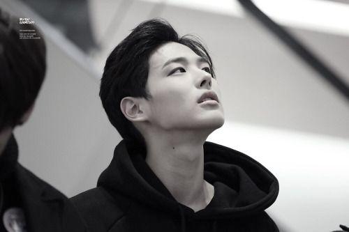 Choi Byung Chan 최병찬    Victon    1997    185cm    Vocal