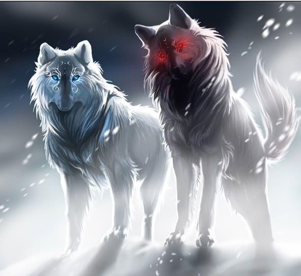 Female Werewolves on Pinterest