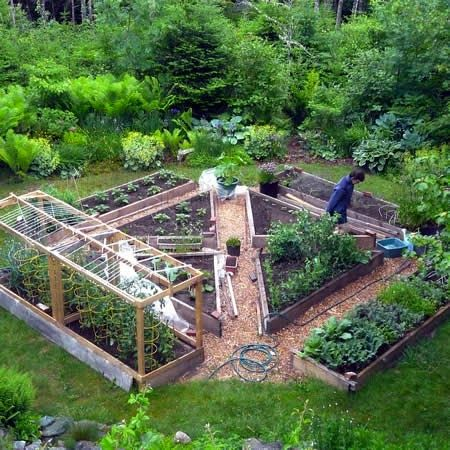 Garden Design Triangular Plot bom dia, tudo bem? hoje em dia quem pode ter horta em casa não é