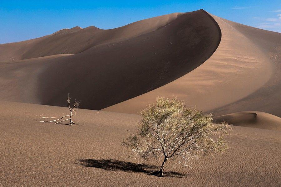 Lut Desert Inscribed on World Heritage List