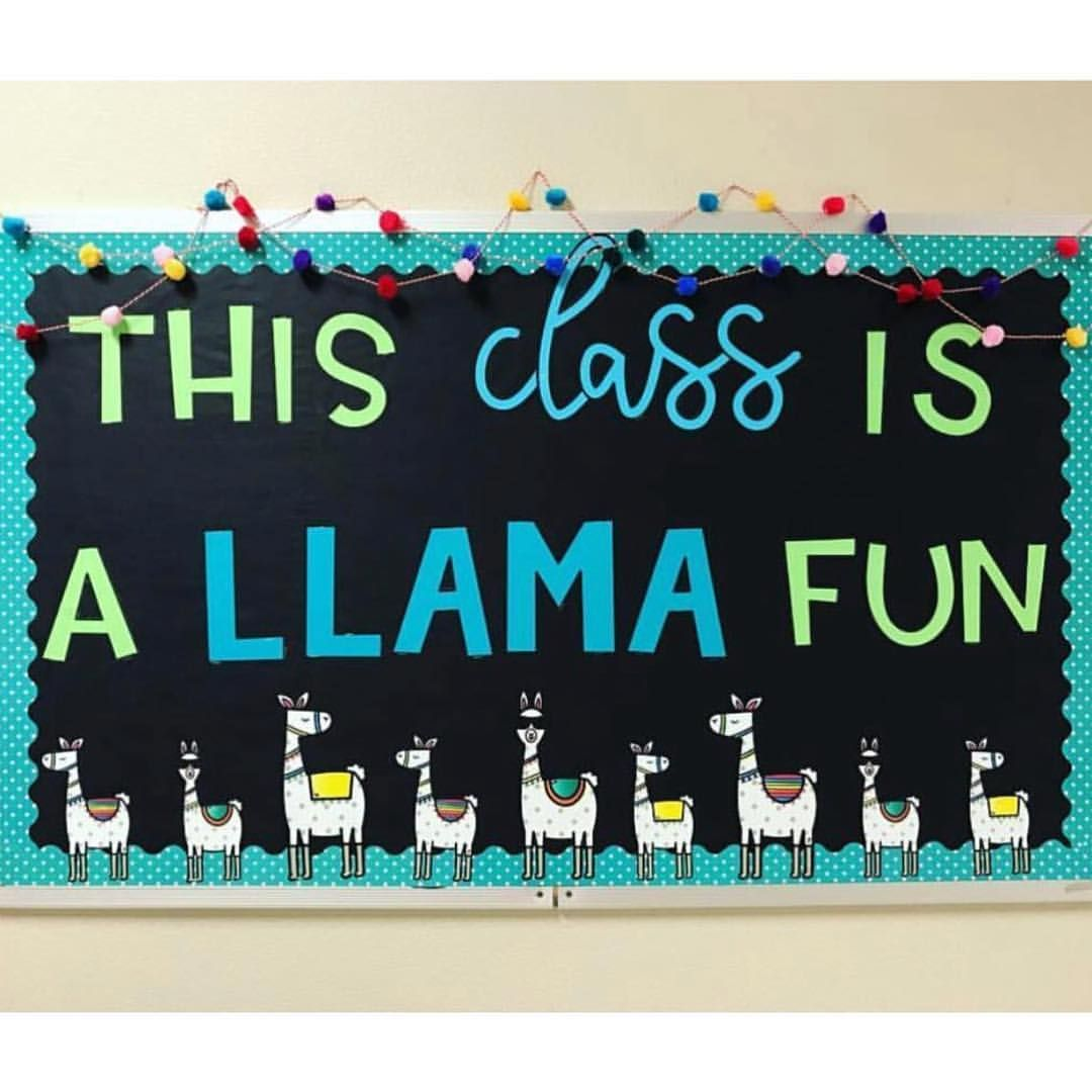 This Class Is A Llama Fun 6thgradeadventures Nailed It