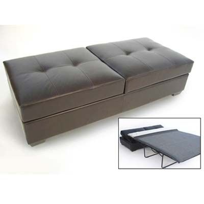 Entertaining In Small Spaces Sleeper Ottoman Ottoman Bed Furniture