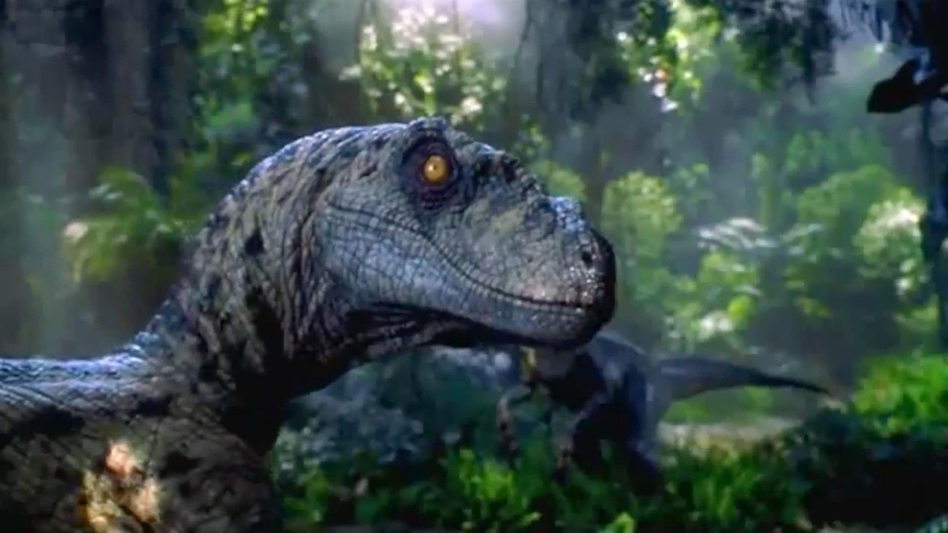 Jurassic Park Spinosaurus Wallpaper 1024x768 3 Wallpapers 48