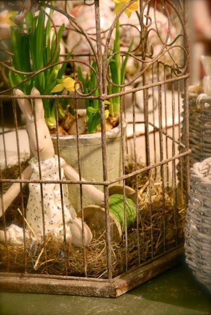 ideas for birdcage