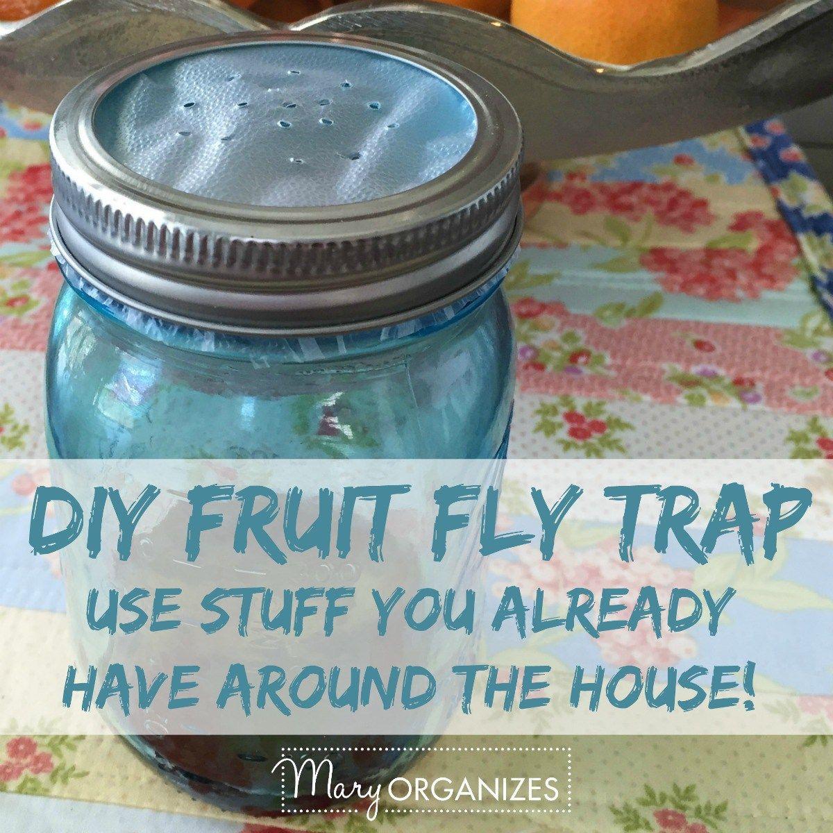 Get rid of fruit flies for good cleaning pinterest diy fruit