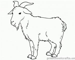 Goat Coloring Pages For Kids Colouring Pages Coloring Pages Goats