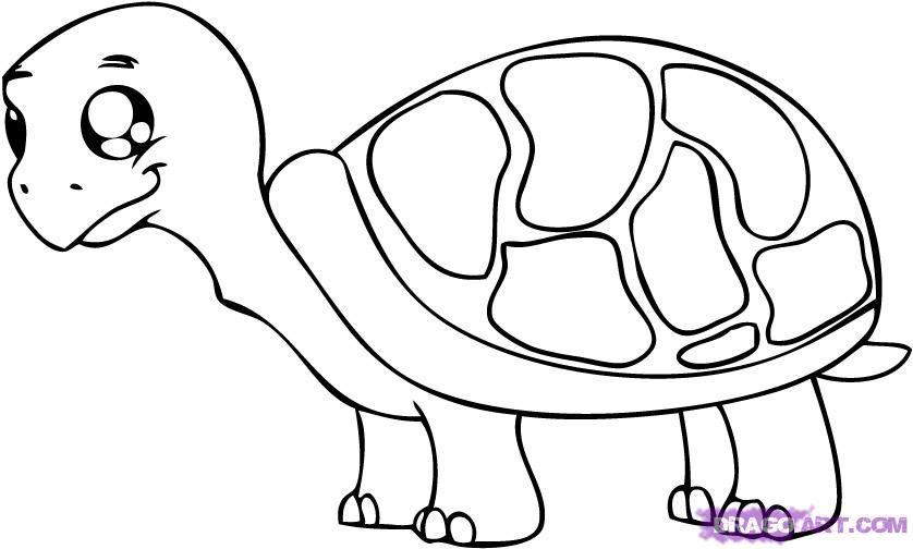 Cute Cartoon Animals Pictures Clipart Best Easy Cartoon Drawings Cartoon Drawings Of Animals Cartoon Animals