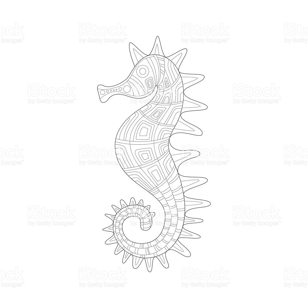 Seahorse Sea Underwater Nature Adult Black And White Royalty Free