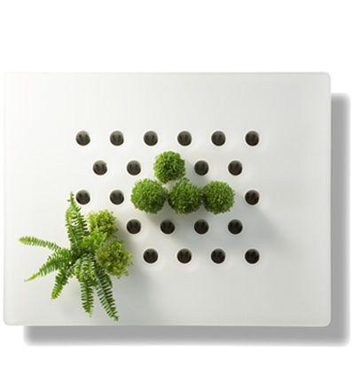 ecran vegetal Diva 84*69*5.5cm vertilignes (+-990) | Un jardin ...