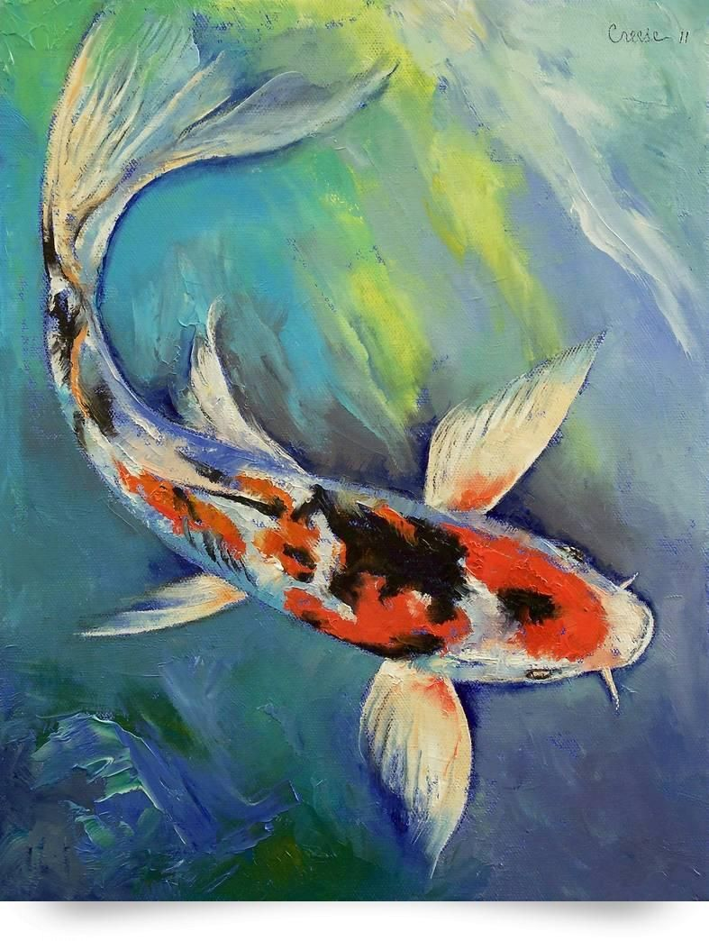 Fish painting birds eye view google search project for Koi fish canvas art