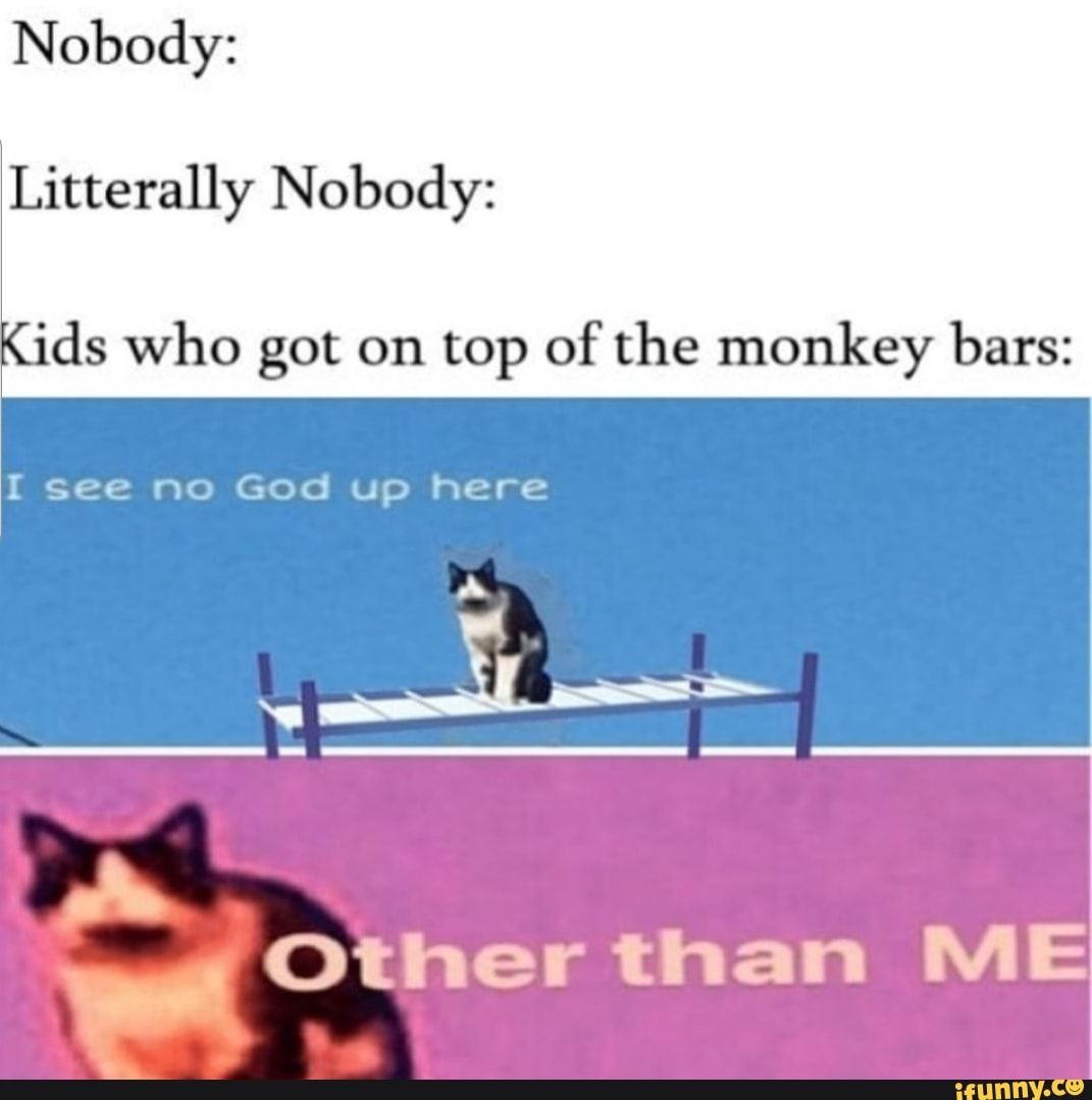 Nobody Litterally Nobody Ds Who Got On Top Of The Monkey Bars