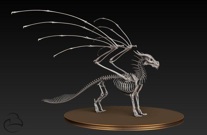 Dragon Skeleton
