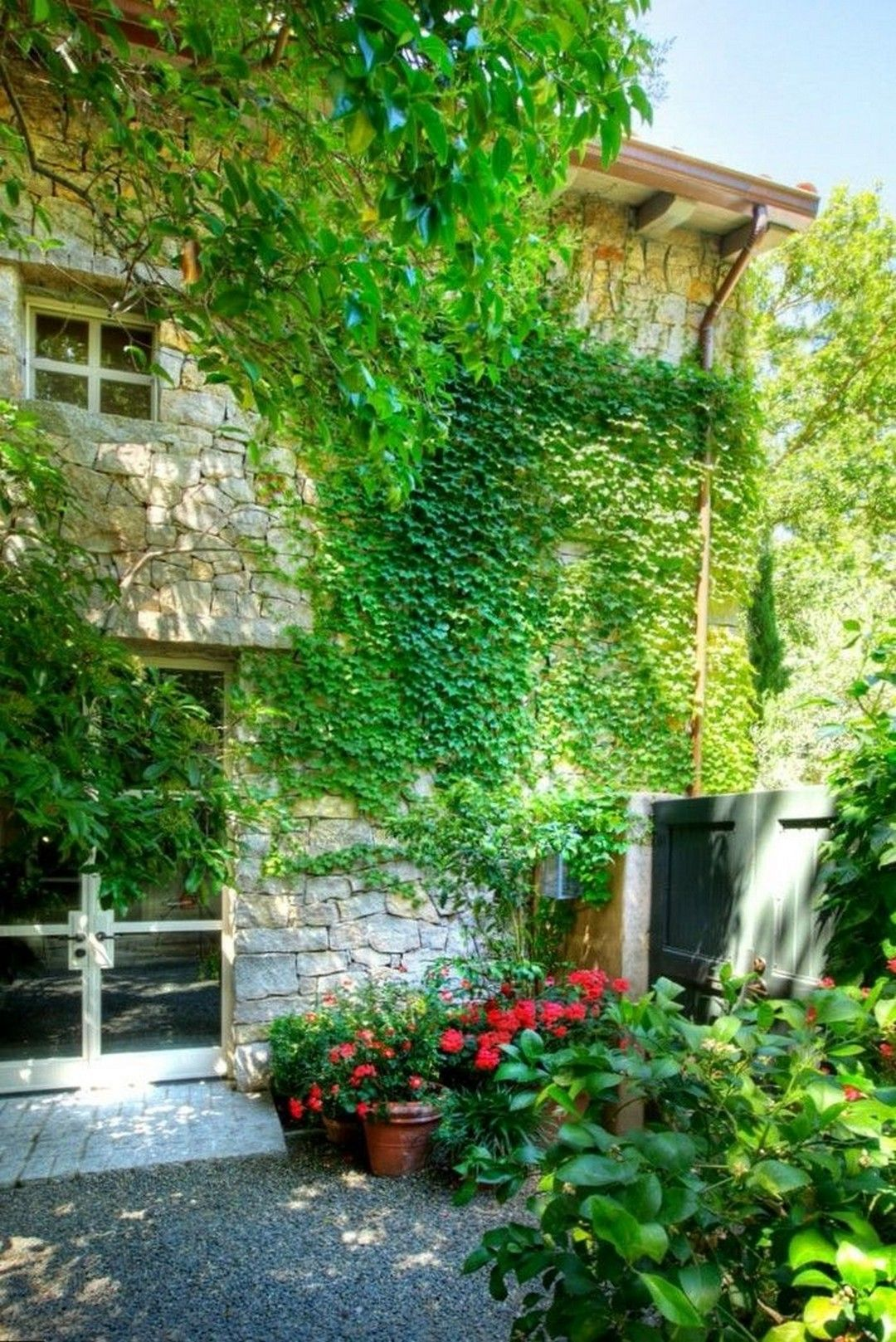 38 Climbing Plants Decor Ideas To Make A Perfect Garden Https Www