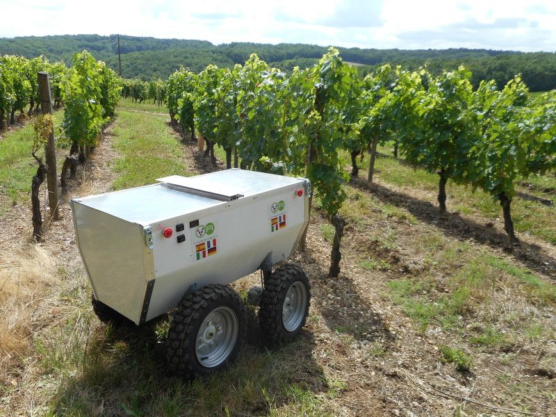Photo of A robot to help improve agriculture and wine production