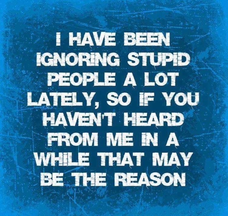 Ignoring Stupid People Favorite Quotes Funny Quotes Funny