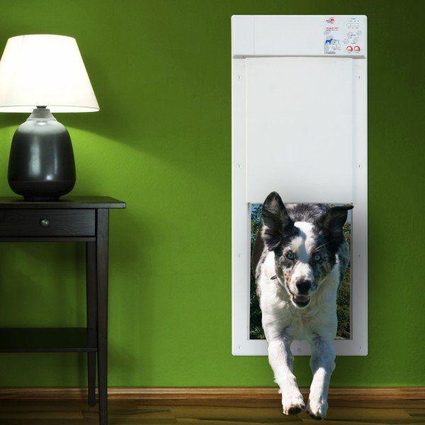 Electronic Pet Door This Electronic Pet Door Is An Advanced And Motorized Per Door Activated By An Ultrasonic Pet Collar With Images Dog Door Pet Door Automatic Dog Door