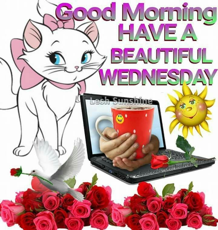 Good Morning Have A Beautiful Wednesday Good Morning Wednesday Wednesday Quotes Good Morning