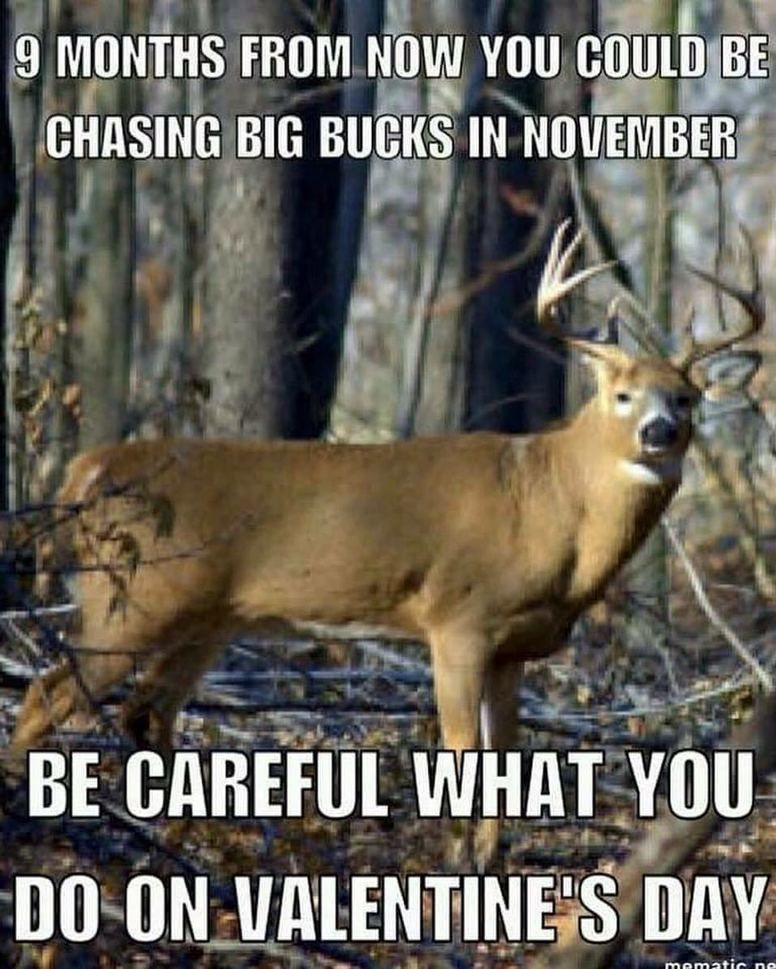 Plz Say Something About This Picture Follow Best Hunter Fishing Funny Hunting Pics Hunting Quotes Funny Hunting Humor