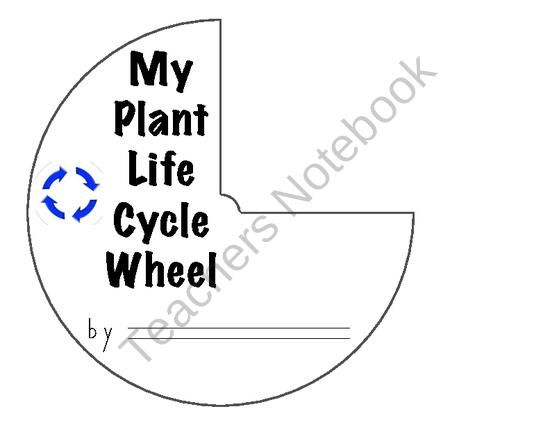 Plant Life Cycle Wheel TeachersNotebook.com (7 pages