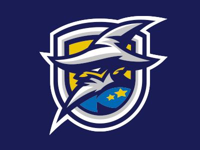 Vixens Wizards Logo Fantasy Football Logos Sports Team Logos