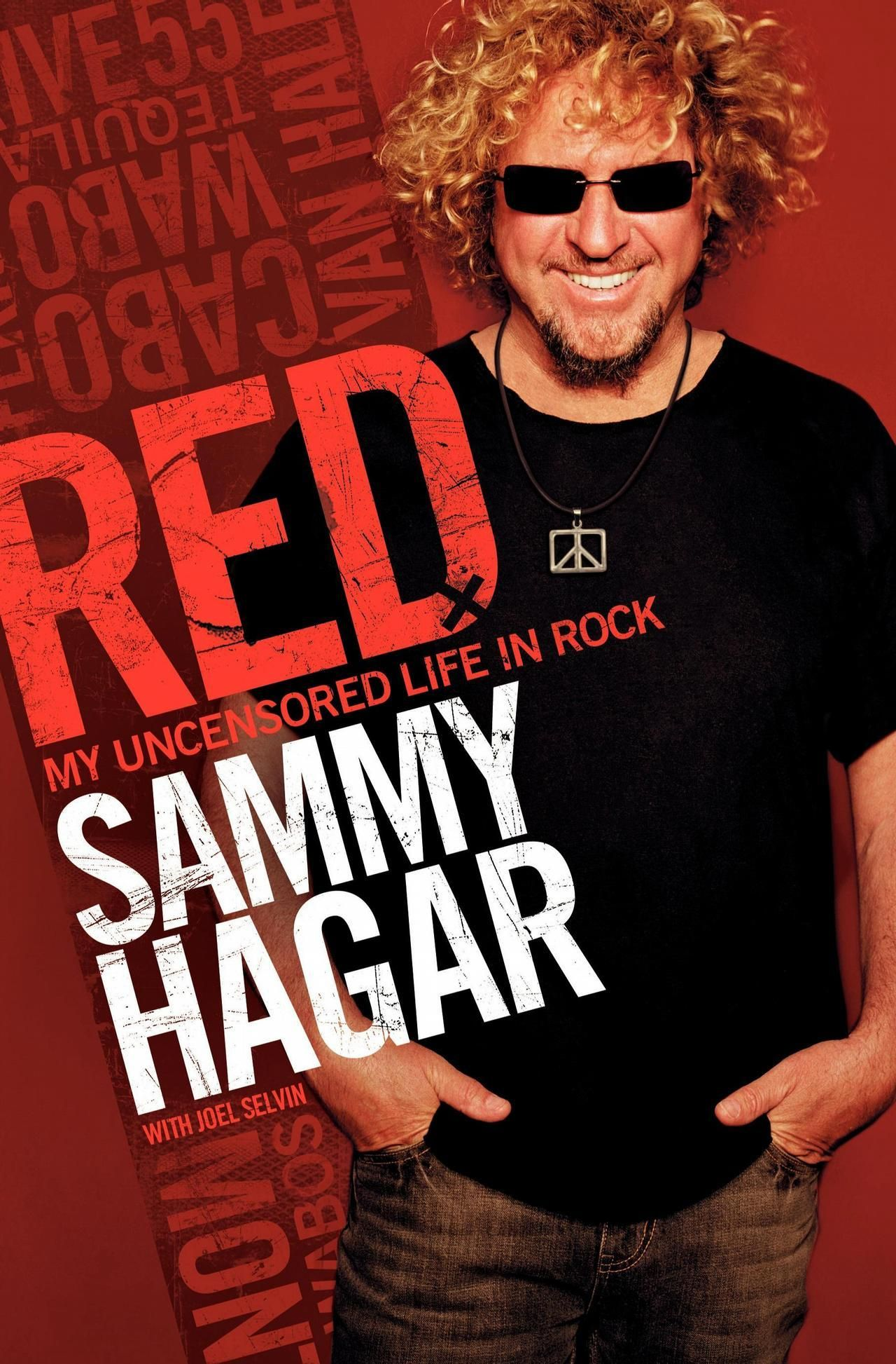My Favorite Singer Tells His Life Story Lots Of Info On His Time With Van Halen Sammy Hagar Paperback Writer Books