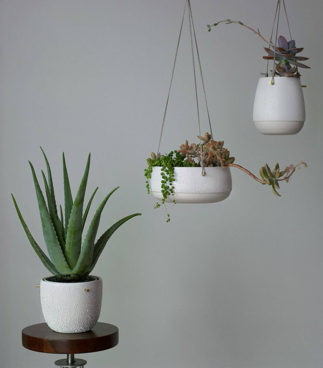 Ceramic Pots For Plants Indoor Shallow Pierced Hanging Planter Potted Plants