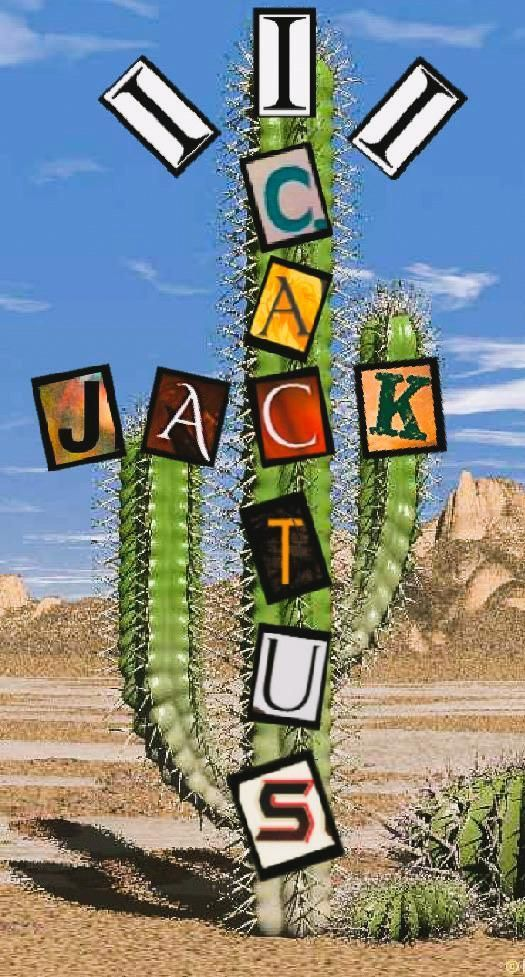 Cactus Jack Wallpaper for mobile phone tablet desktop