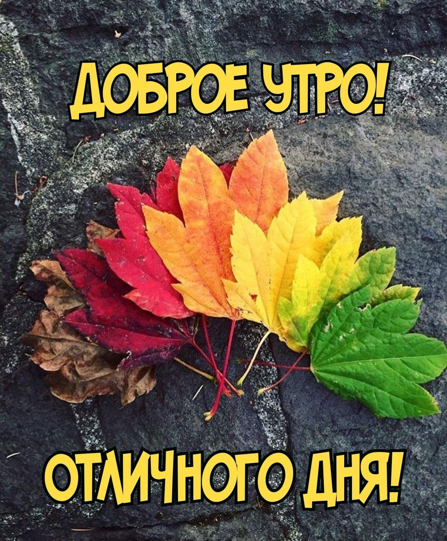 Pin Ot Polzovatelya Alla Romanova Na Doske Korotko O Raznom