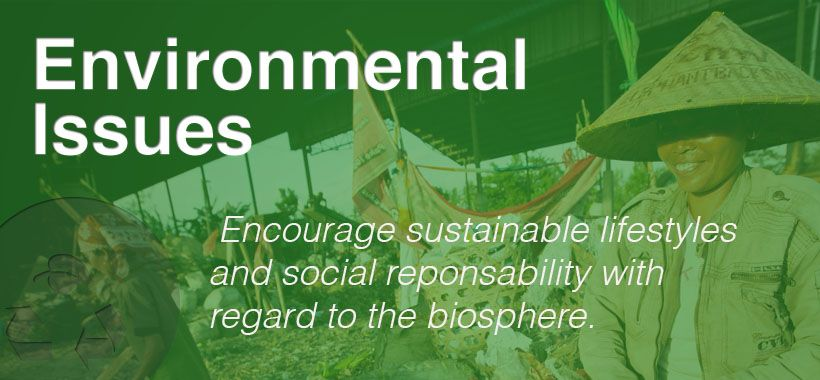 Aiesec Canada Sustainable Lifestyle Hosting Company Environmental Issues