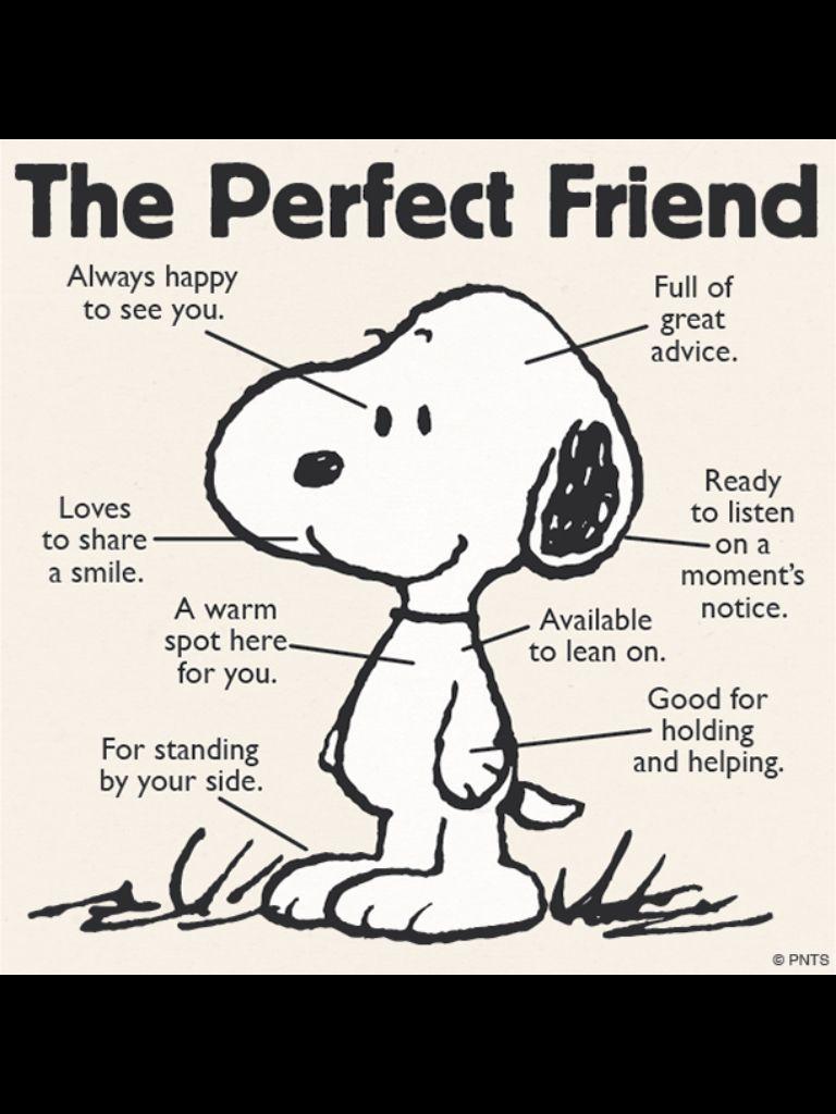 Citaten Over Jeugd : Snoopy vriendschap pinterest