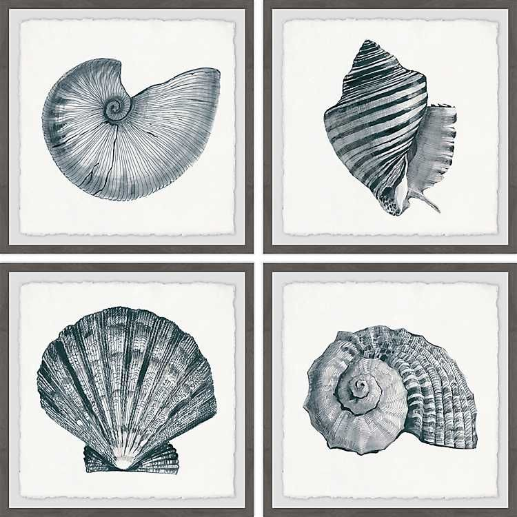 Gray sea shells framed art prints set of 4 in 2020