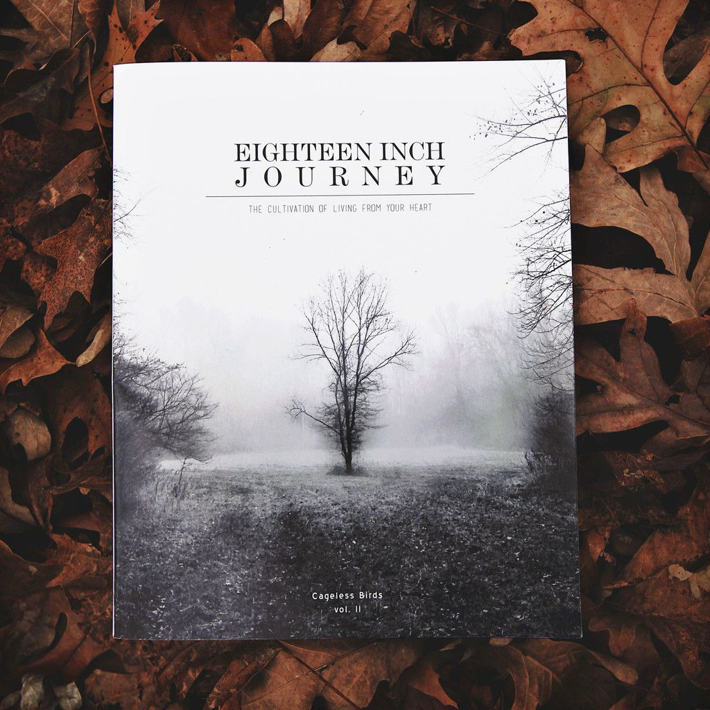 *Pre- Order* Eighteen Inch Journey Book : Volume II Ships out December 15