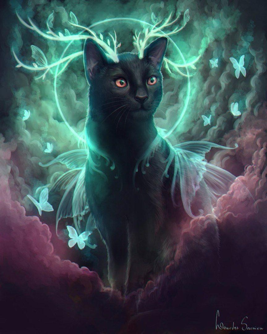Картинки с волшебными кошками