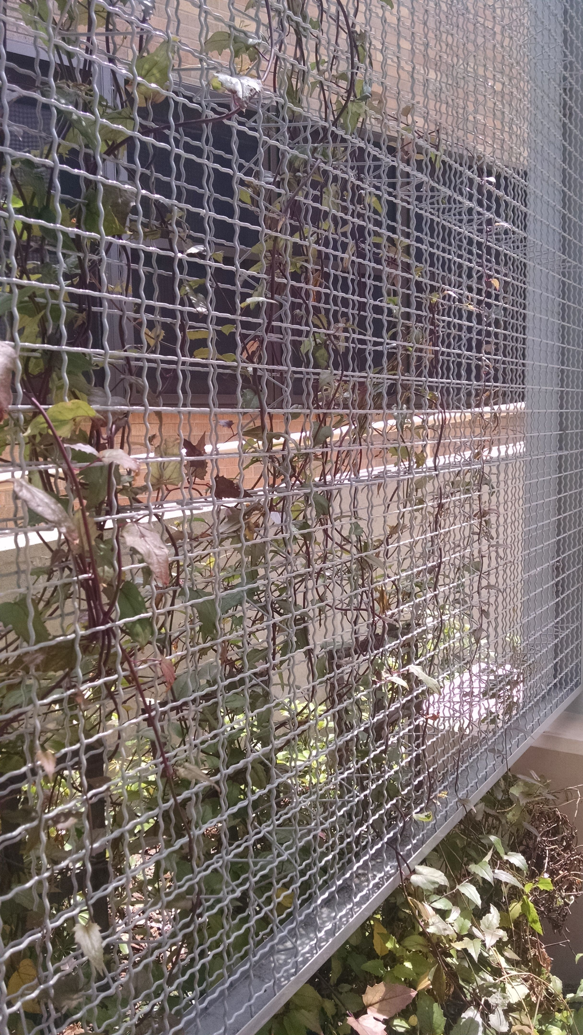 Eco Mesh Wire Mesh In 2019 Mcnichols 174 Wire Mesh Wire